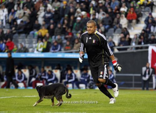 كلب يوقف مباراة منتخبي البرازيل 2011-07-032011-07-03t194558z_01_bas608_rtridsp_3_soccer-copa_reuters.jpg