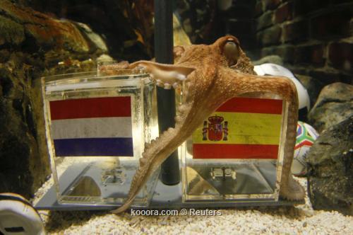 الاخطبوط باول يتنبأ بفوز أسبانيا بلقب كأس العالم وحصول ألمانيا على المركز الثالث       I.aspx?i=reuters%2f2010-07-09%2f%2f2010-07-09t101915z_01_wr03_rtridsp_3_soccer-world-octopus_reuters